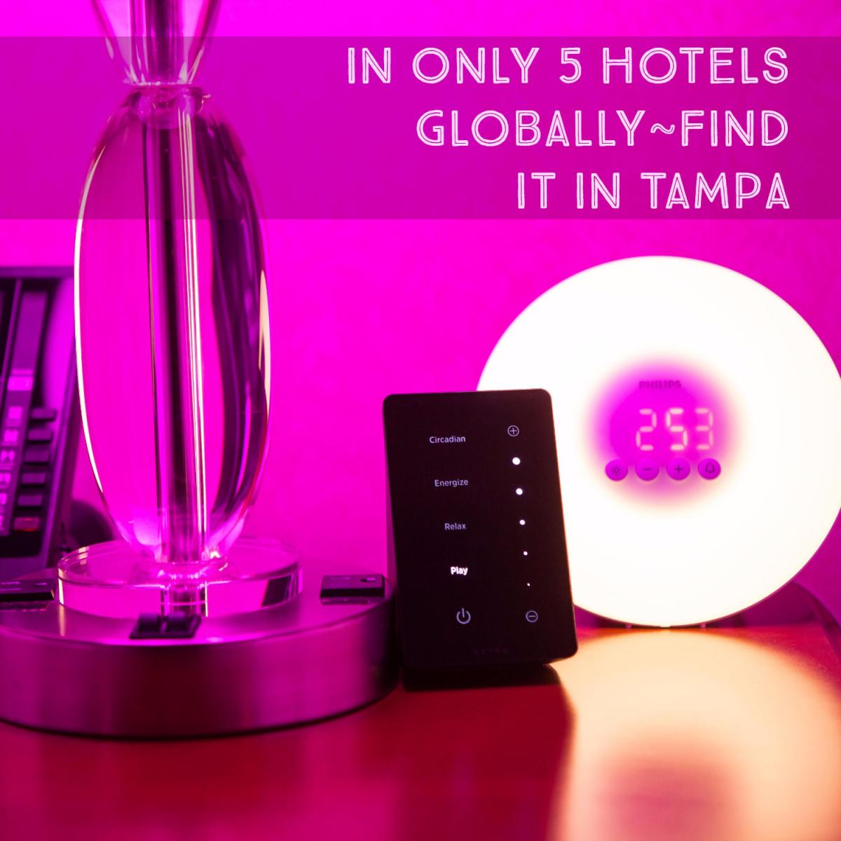 Experience the Best of Boutique at this Luxury Hotel in Tampa