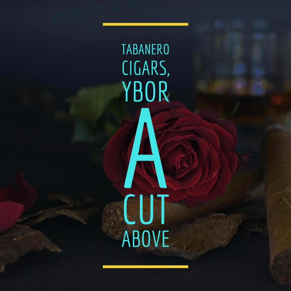 Focus on Ybor | Meet Tabanero Cigars Passionate Owner, Yanko