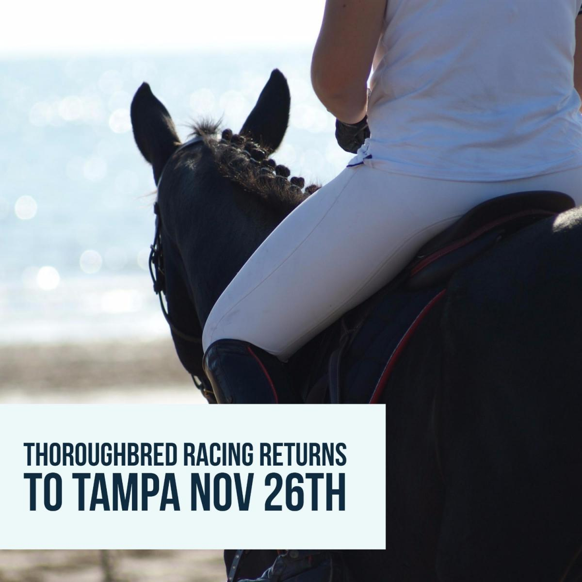 Thankful Tampa Bay Downs and Thoroughbred Racing Returns November 26th