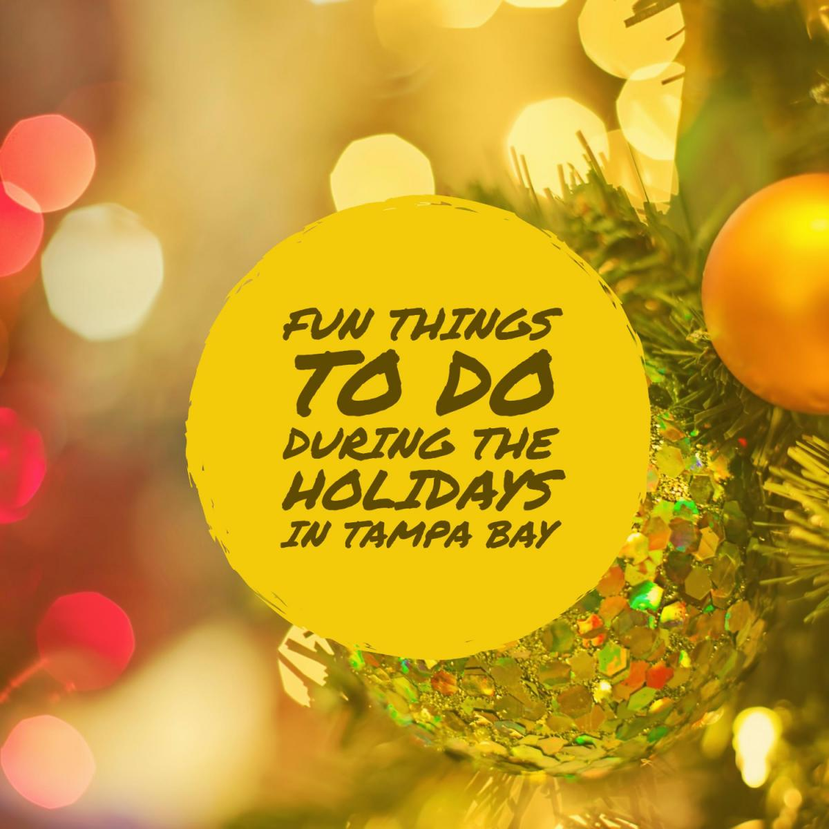 Fun Things to Do During the Holidays in Tampa Bay