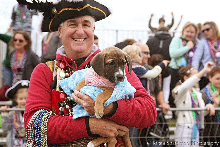 2017 Gasparilla Children's Parade Fun Guide
