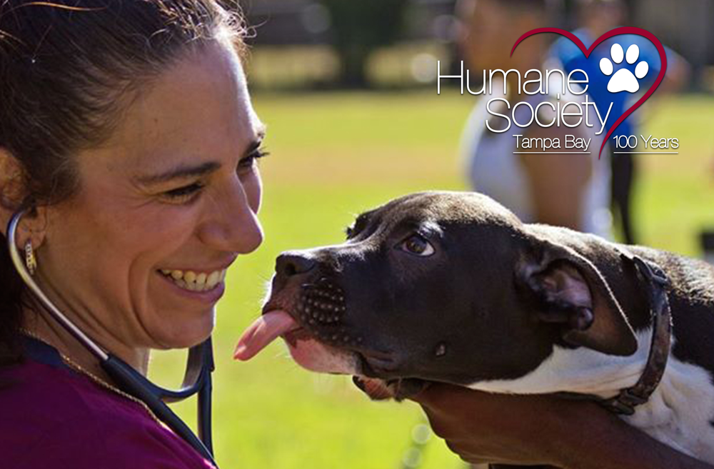 Humane Society of Tampa Bay Hosts Free Shot Clinic for Dogs
