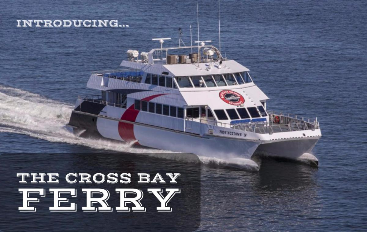 Say 'Ahoy' to Tampa's New Highlight, the Cross Bay Ferry
