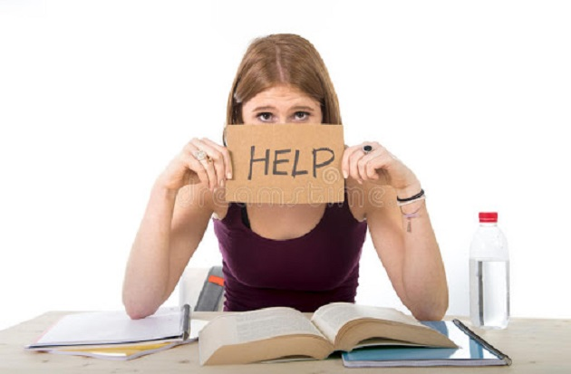 Where Are the Best Tutoring Services in the Gainesville Area?