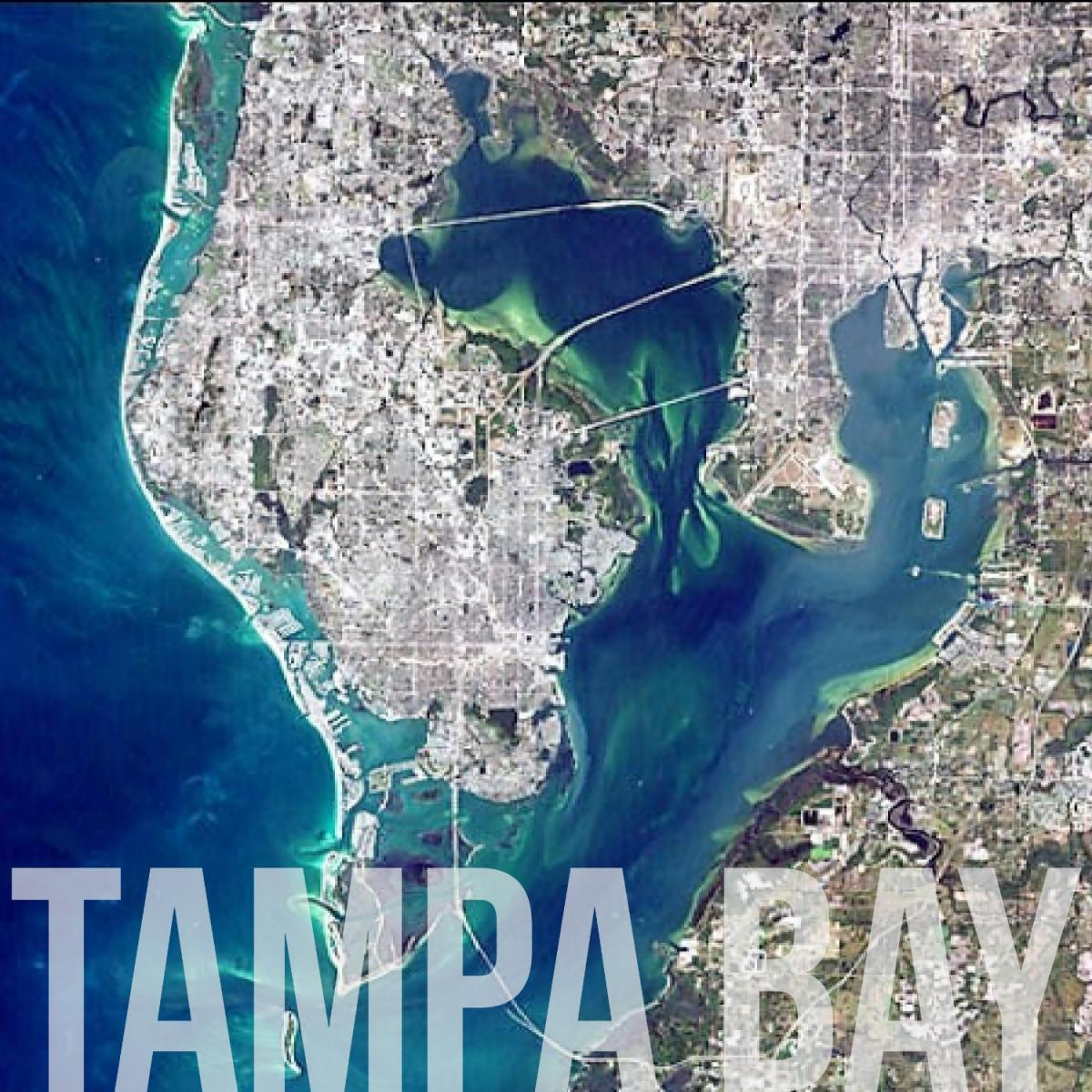 Top 10 Things to Do This Labor Day Weekend in Tampa Bay