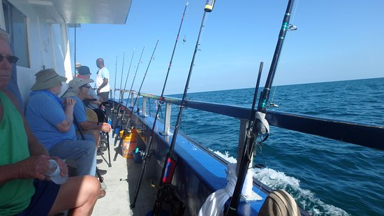 Fishing in tampa bay charters captains deep sea for Tampa deep sea fishing