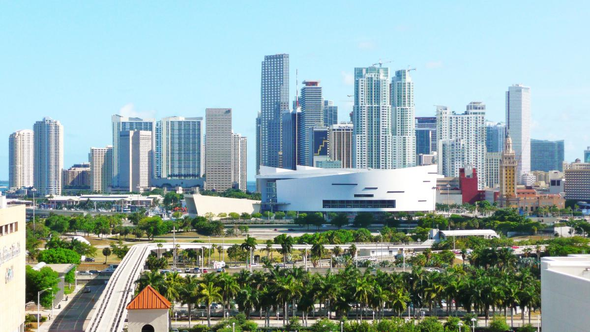 Experience All That the Magic City Has to Offer With Miami's Best Tours