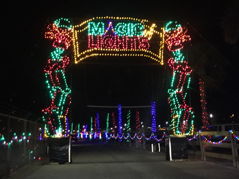 read more brighten your holiday with magic of lights