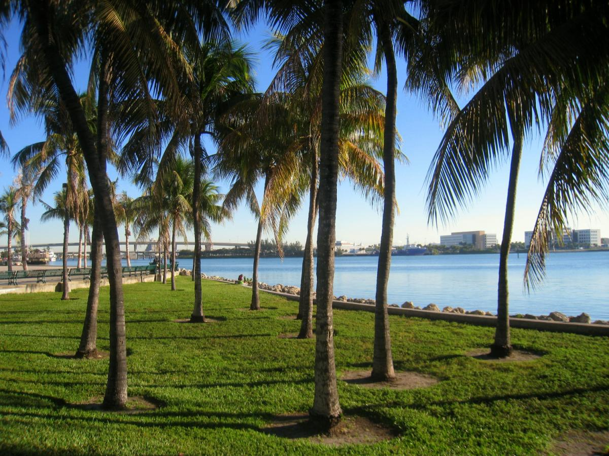 Family-Friendly Parks in Miami