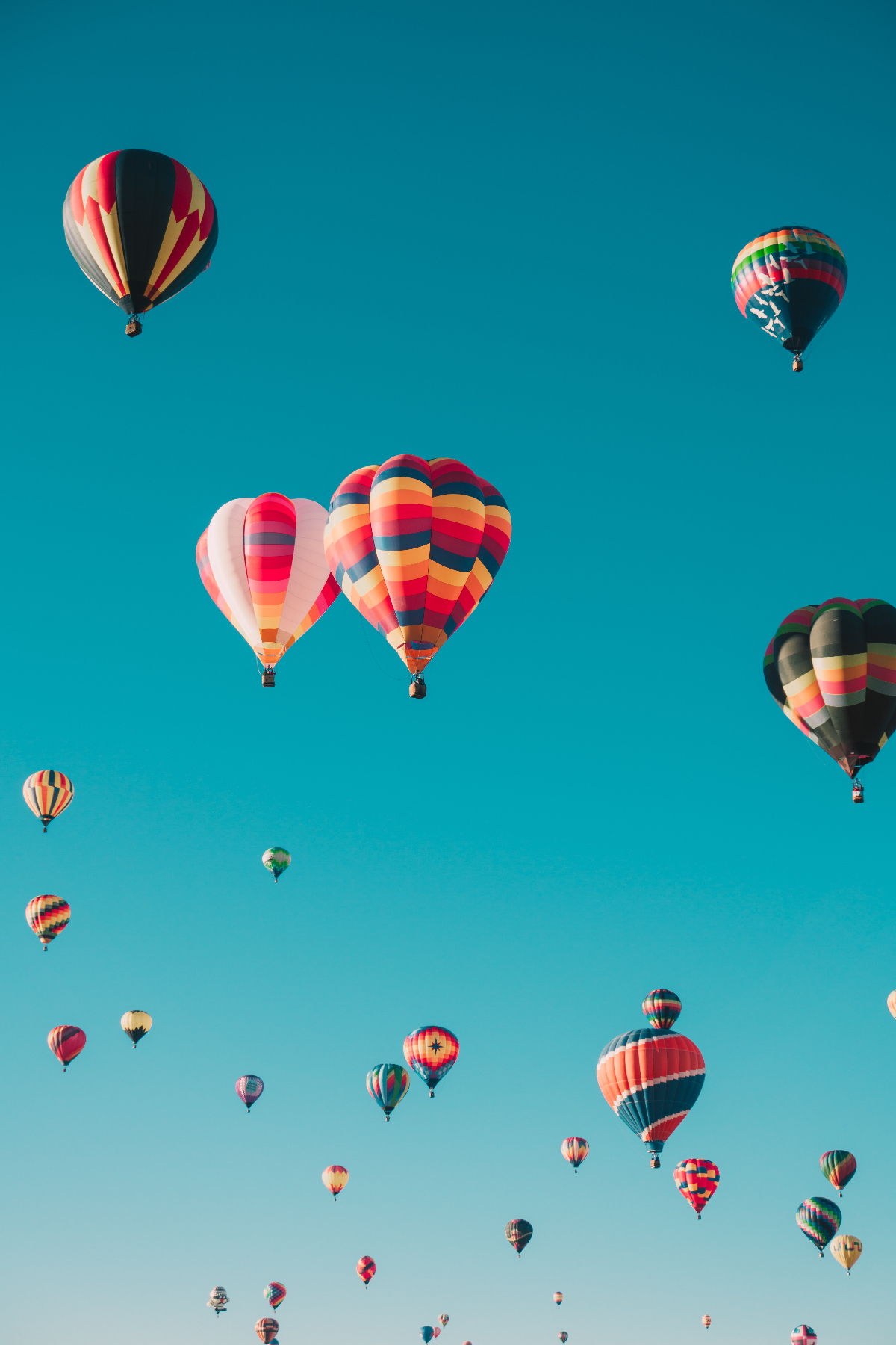 Sarasota Hot Air Balloon Festival and Carnival 2018