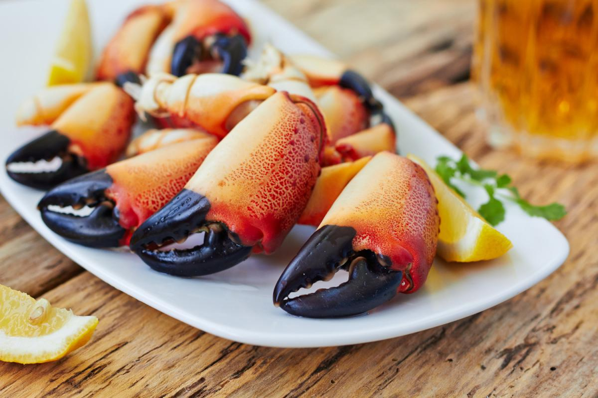 The Best Stone Crabs in Miami