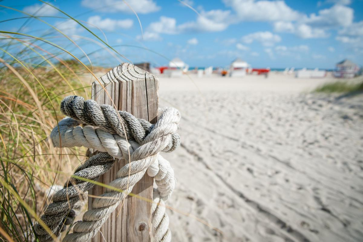 Things to Do in Longboat Key