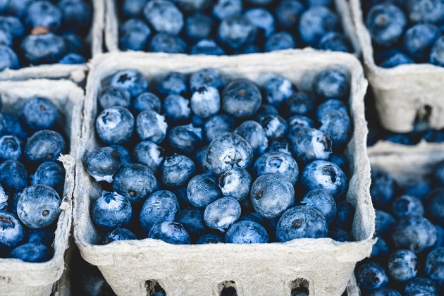 Blueberry Festivals in North Central Florida