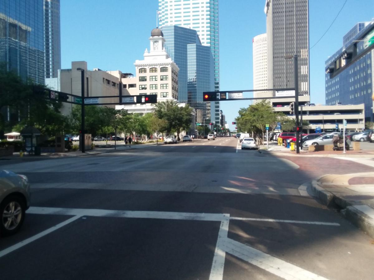 How I've Survived One Year Without a Car in Tampa