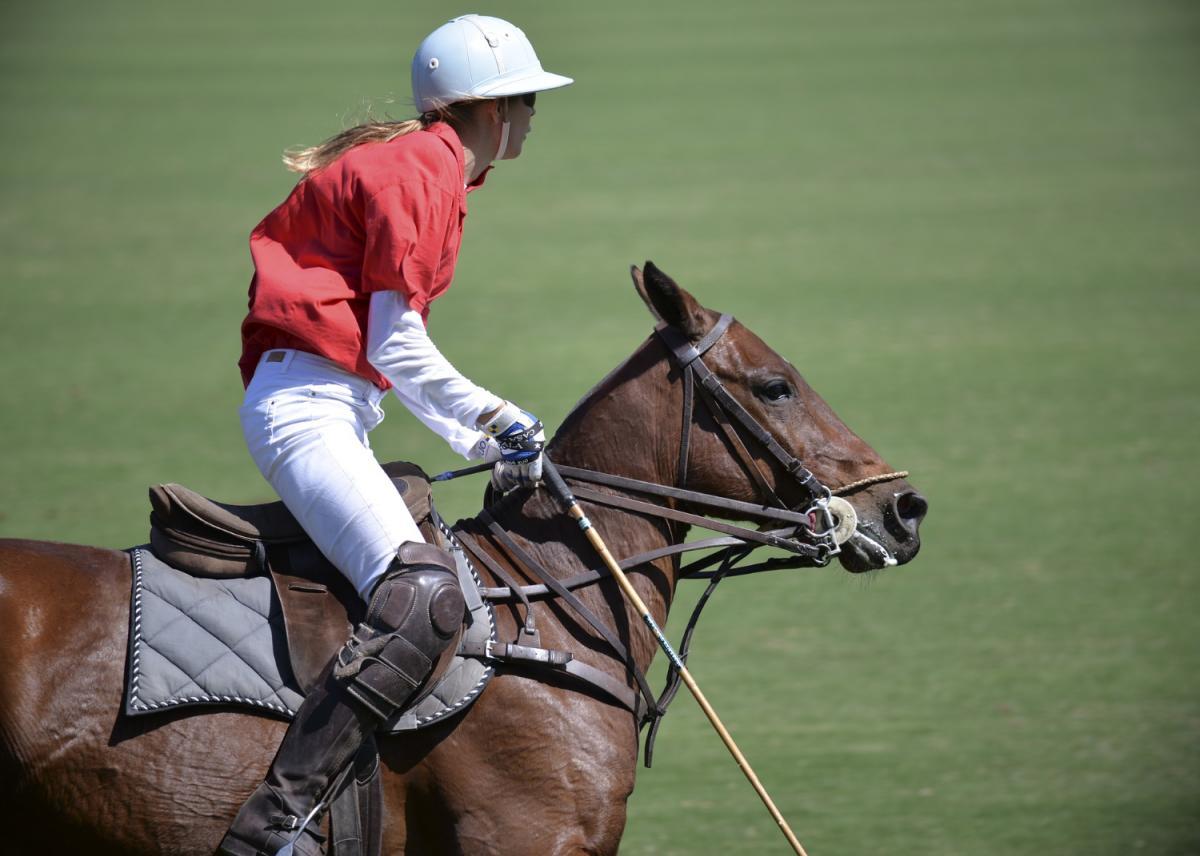 The Sarasota Polo Club at Lakewood Ranch