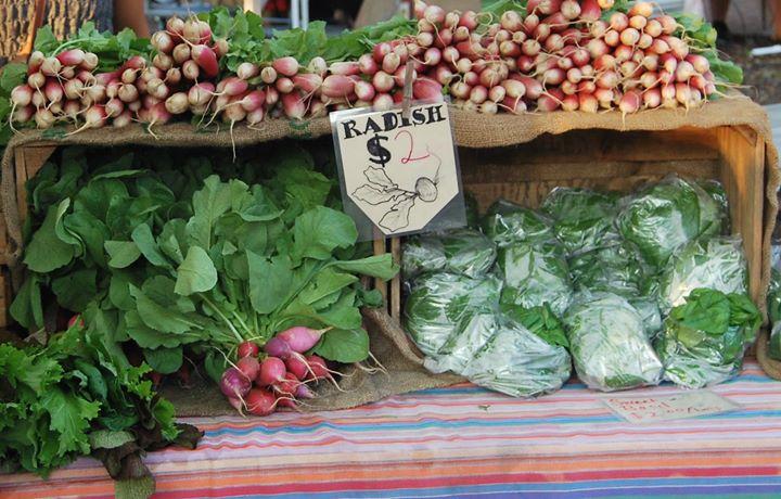 Union Street Farmers Market in Gainesville