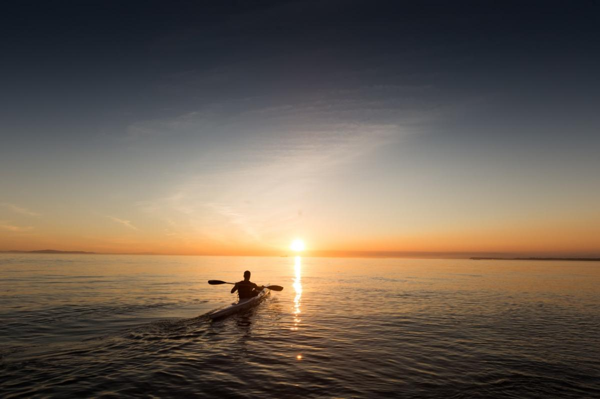 Where to Kayak, Canoe, or Paddleboard in St. Pete and Clearwater