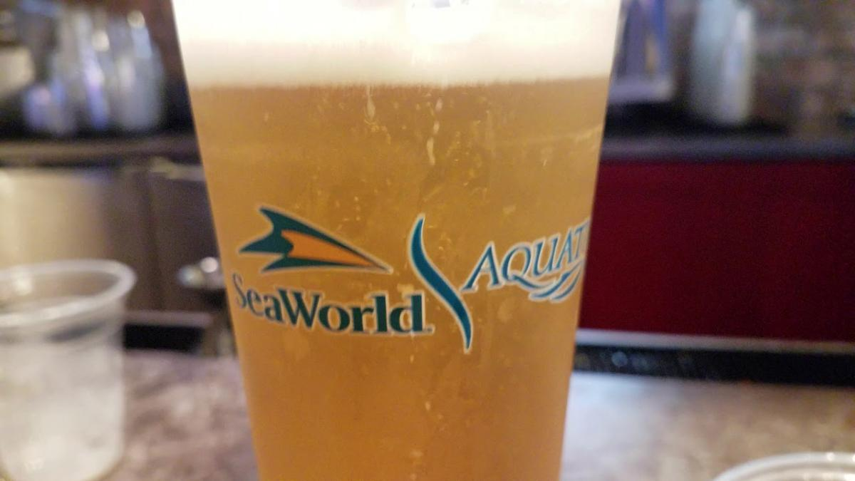 Free Beer Is Back At SeaWorld Orlando This Summer