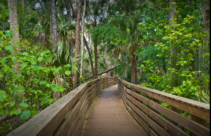 Best Hiking Trails In Orlando