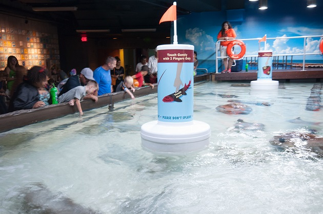 Keep Cool in Tampa With Some Indoor Fun