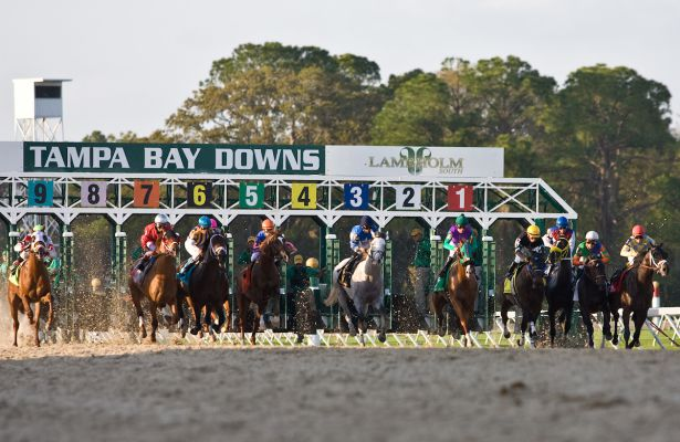 Racing Season Kicks Off at Tampa Bay Downs!