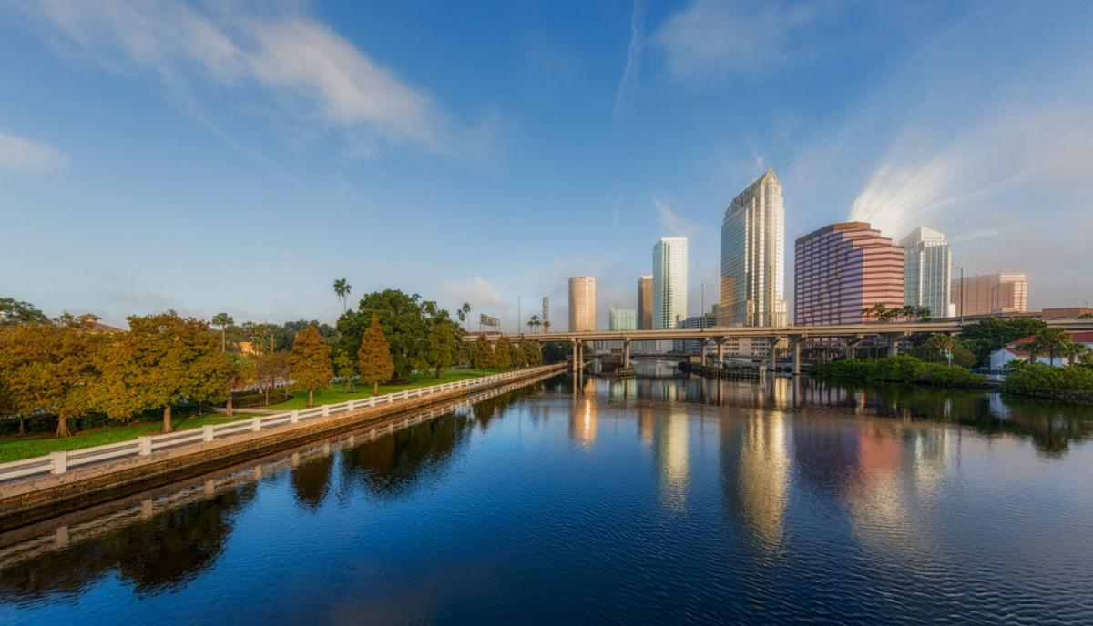 Top Things To Do in Tampa Bay This Weekend | November 15th-18th