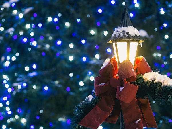 Celebrate the Season with These Christmas Events in Sarasota