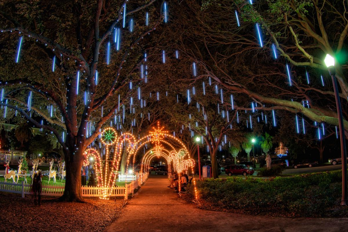 Fun Holiday Events and Things to Do in Clearwater, St. Pete, Largo and More This Weekend! | December 20th-23rd