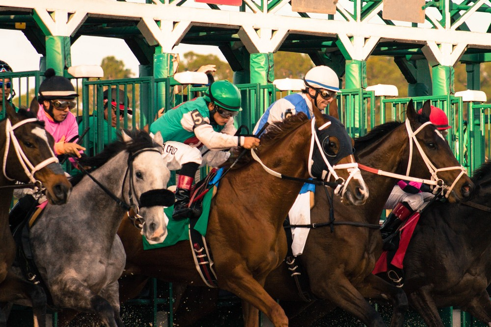 Tampa Bay Downs Schedule 2020 The Stakes Are High at Tampa Bay Downs' Premier Day January 19