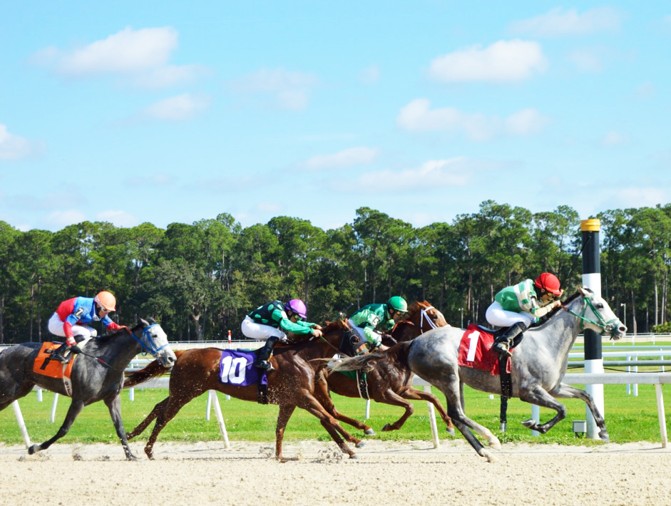 Show Your Forecasting Stuff During Tampa Bay Downs' High Rollers Handicapping Contest January 19