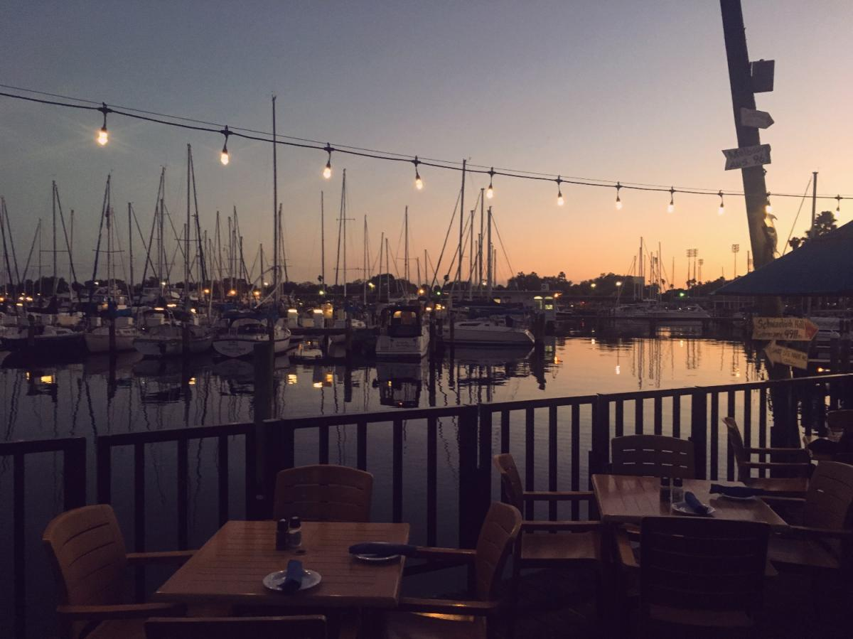 The Coolest Things To Do in St. Pete, Clearwater, Dunedin, Largo and More This Weekend | January 24th-27th