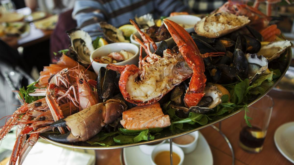 Best Seafood Restaurants In Tampa Fresh Fish Oysters Crab