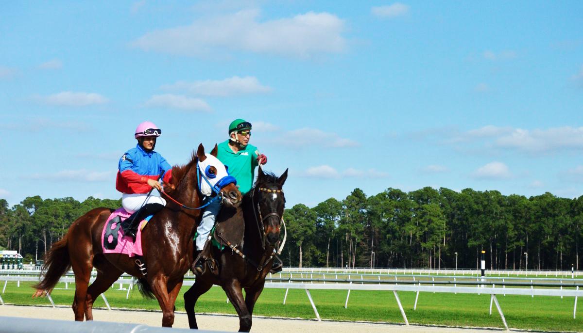 Final Stakes Saturday at Tampa Bay Downs on May 4