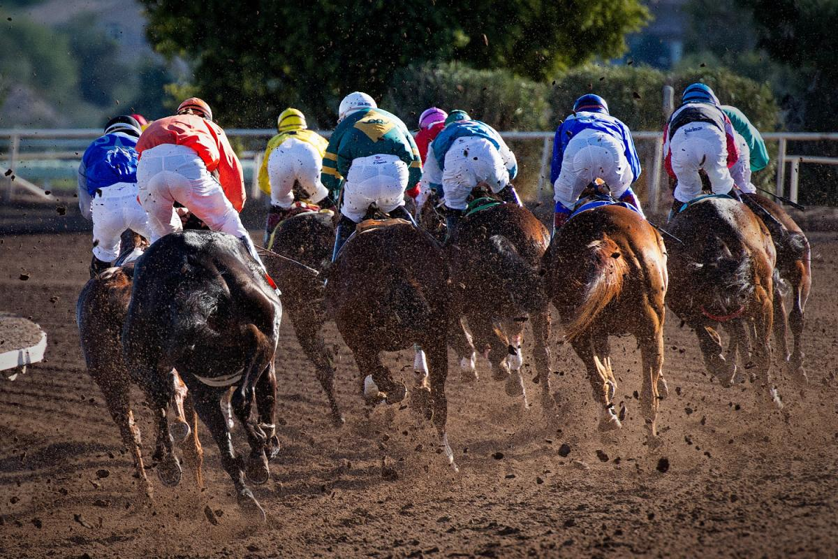 It's Time to Party Derby-Style at These Kentucky Derby Parties in Pinellas County!