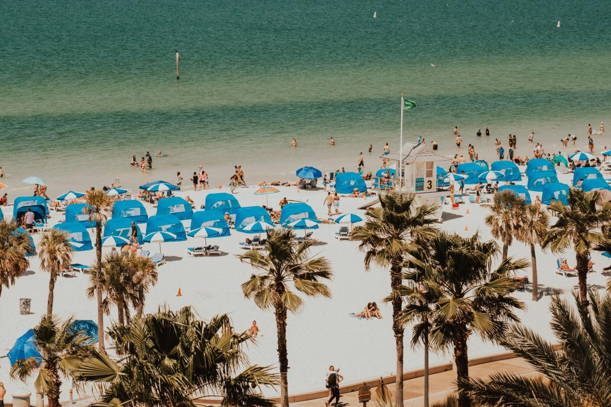 Things to Do in Clearwater Beach This Summer