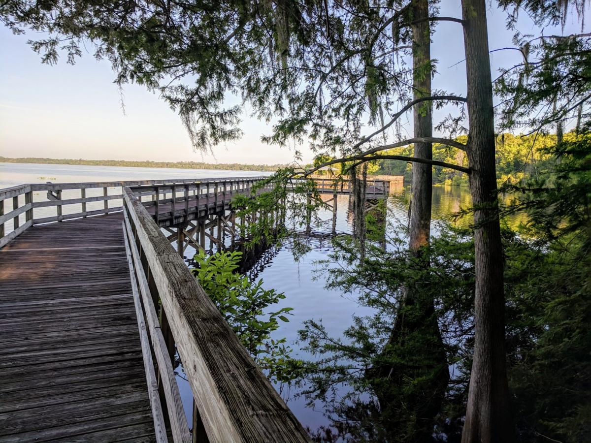 Explore the Outdoors at These New Smyrna Beach Parks