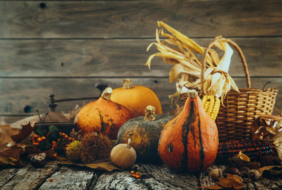 Thanksgiving Events in Fort Myers and Naples