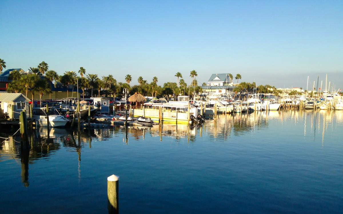 Things To Do in St. Pete and Clearwater This Weekend | November 5th - 8th