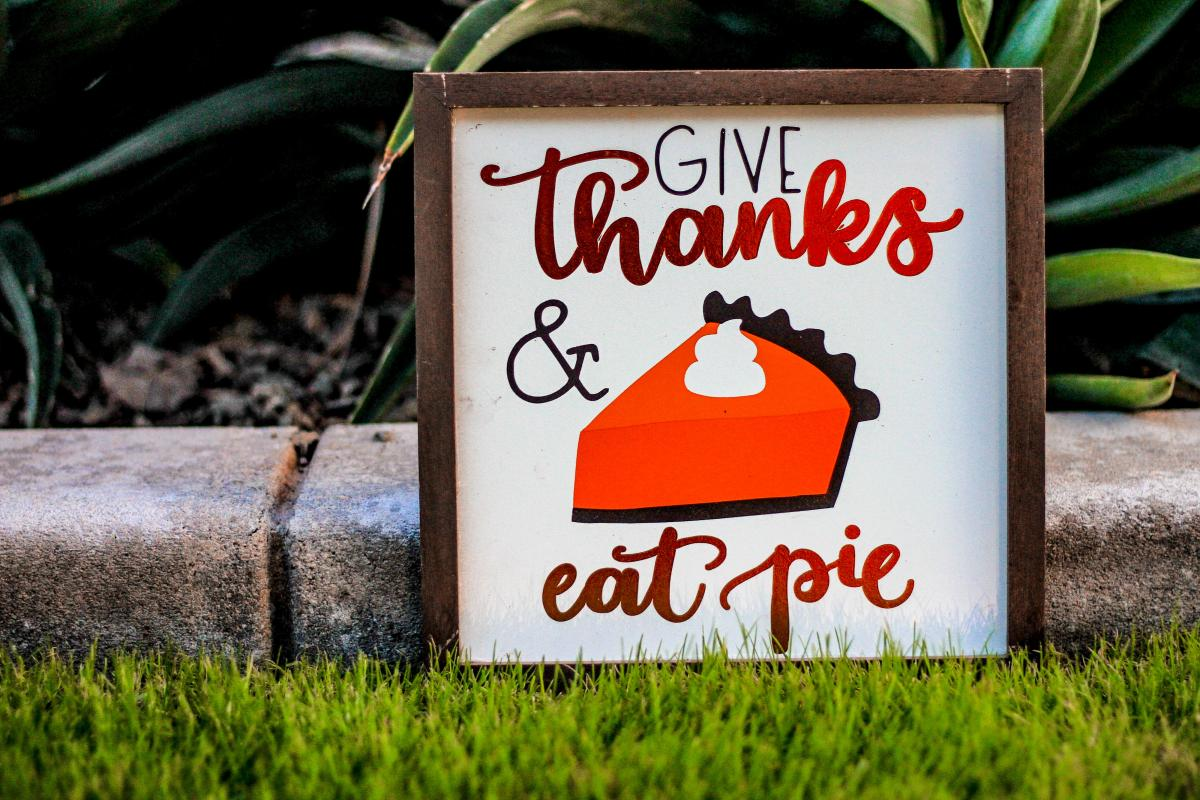 Things To Do in St. Pete and Clearwater This Weekend | November 26th - 29th | Thanksgiving Weekend in Pinellas