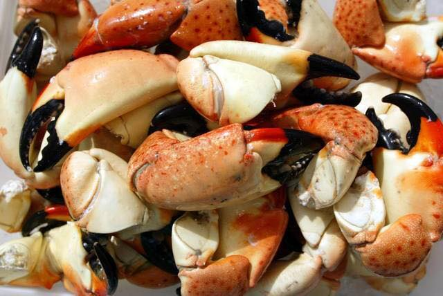 Billy's Stone Crab, Seafood, and Steaks on St. Pete Beach