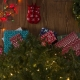 Local Charities You Can Support This Holiday Season in Tampa