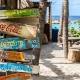 Best Spring Break Bars & Clubs in Daytona Beach | Specials, Music
