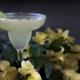 Best Margaritas in St. Petersburg