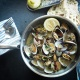 Best Seafood in Siesta Key   Oysters, Crab, Lobster, and More