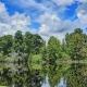 Best Parks in Tampa, FL