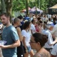 Beer Lovers Prepare as 4th Annual Temple Terrace Craft Brew Fest Hits Tampa Bay!