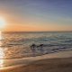 See What All the Hype is About at Sarasota's Beautiful Beaches