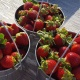 Where to Pick Your Own Strawberries in Orlando