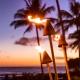 Best Tiki Bars in Miami