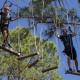 Discover Florida's Nature Coast